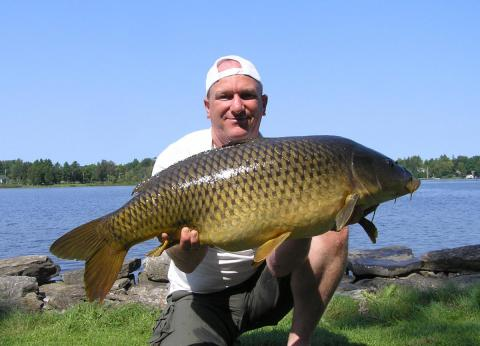 Mark - August Superb Carp at Lakeside