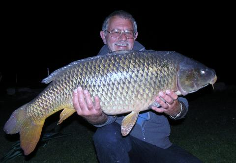 Reg - Sept Superb Fish